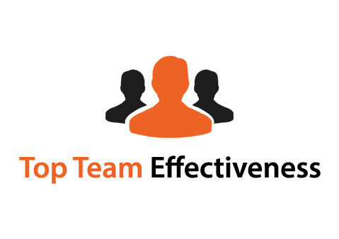 TOP TEAM EFFECTIVENESS